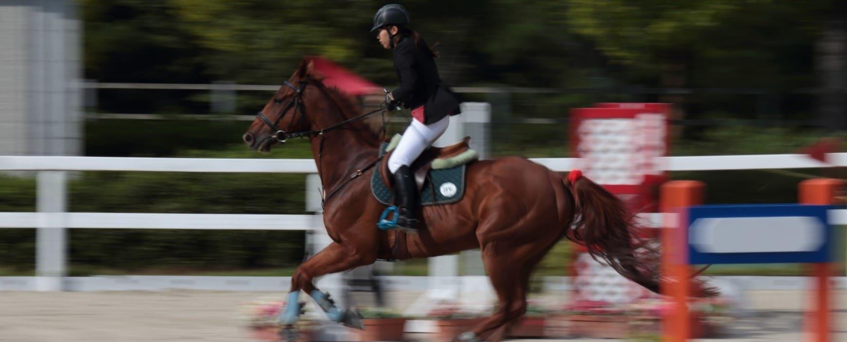 ギャロップジャパンの競走馬や騎手への独自取材