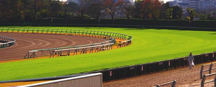 中山競馬場のコース