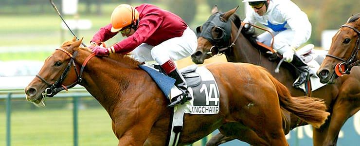僅差で逃げ切って勝利する馬