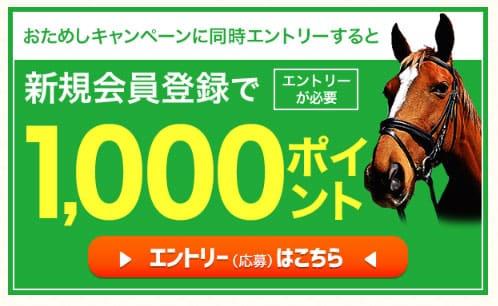 楽天競馬の登録キャンペーン
